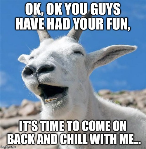 Laughing Goat | OK, OK YOU GUYS HAVE HAD YOUR FUN, IT'S TIME TO COME ON BACK AND CHILL WITH ME... | image tagged in memes,laughing goat | made w/ Imgflip meme maker