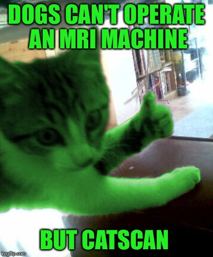 DOGS CAN'T OPERATE AN MRI MACHINE BUT CATSCAN | image tagged in thumbs up raycat,memes | made w/ Imgflip meme maker