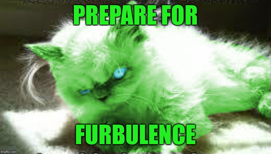 mad raycat | PREPARE FOR FURBULENCE | image tagged in mad raycat,memes | made w/ Imgflip meme maker
