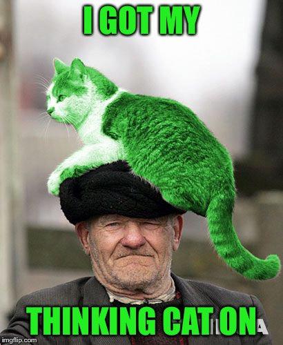 Cat on a Hat | I GOT MY THINKING CAT ON | image tagged in cat on a hat,memes | made w/ Imgflip meme maker