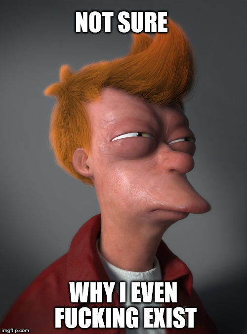 God help us all... | NOT SURE WHY I EVEN F**KING EXIST | image tagged in memes,futurama fry | made w/ Imgflip meme maker