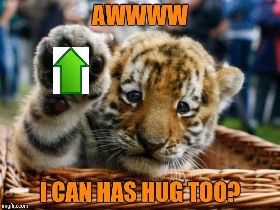 AWWWW I CAN HAS HUG TOO? | made w/ Imgflip meme maker