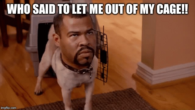 I Was Fine. | WHO SAID TO LET ME OUT OF MY CAGE!! | image tagged in gon gon,key,peele,dog,funny,meme | made w/ Imgflip meme maker