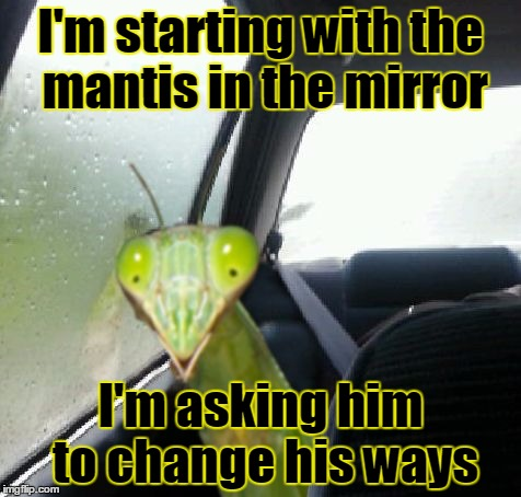 I'm starting with the mantis in the mirror I'm asking him to change his ways | made w/ Imgflip meme maker