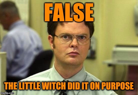 dwight | FALSE THE LITTLE WITCH DID IT ON PURPOSE | image tagged in dwight | made w/ Imgflip meme maker