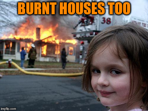 Disaster Girl Meme | BURNT HOUSES TOO | image tagged in memes,disaster girl | made w/ Imgflip meme maker