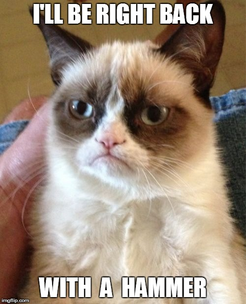 Grumpy Cat Meme | I'LL BE RIGHT BACK WITH  A  HAMMER | image tagged in memes,grumpy cat | made w/ Imgflip meme maker