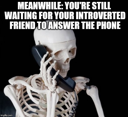 Skeleton on phone | MEANWHILE: YOU'RE STILL WAITING FOR YOUR INTROVERTED FRIEND TO ANSWER THE PHONE | image tagged in skeleton on phone | made w/ Imgflip meme maker