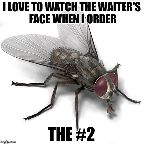 Let it sink in... | I LOVE TO WATCH THE WAITER'S FACE WHEN I ORDER THE #2 | image tagged in scumbag house fly,eat shit,poop | made w/ Imgflip meme maker