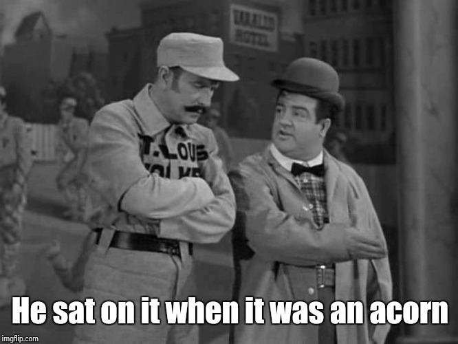 Abbott and Costello | He sat on it when it was an acorn | image tagged in abbott and costello | made w/ Imgflip meme maker