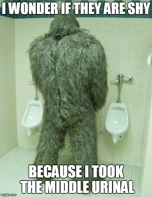Bigfoot | I WONDER IF THEY ARE SHY BECAUSE I TOOK THE MIDDLE URINAL | image tagged in bigfoot | made w/ Imgflip meme maker