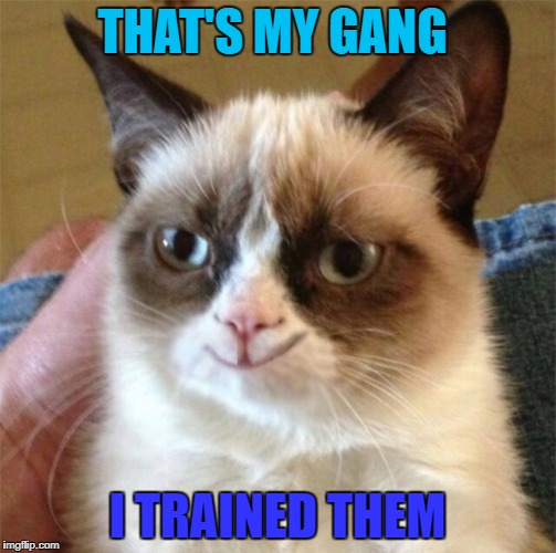 THAT'S MY GANG I TRAINED THEM | made w/ Imgflip meme maker