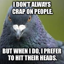 Most Interesting Pigeon craps on people's heads | I DON'T ALWAYS CRAP ON PEOPLE. BUT WHEN I DO, I PREFER TO HIT THEIR HEADS. | image tagged in most interesting pigeon in the world,crap,headshot,bad jokes,oh shit,angry birds | made w/ Imgflip meme maker