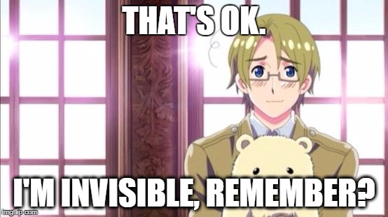 That's ok.... | THAT'S OK. I'M INVISIBLE, REMEMBER? | image tagged in canada,memes,hetalia,bears | made w/ Imgflip meme maker