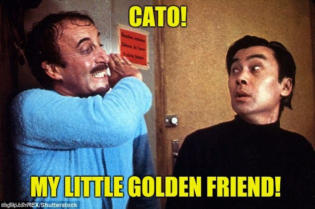 CATO! MY LITTLE GOLDEN FRIEND! | made w/ Imgflip meme maker