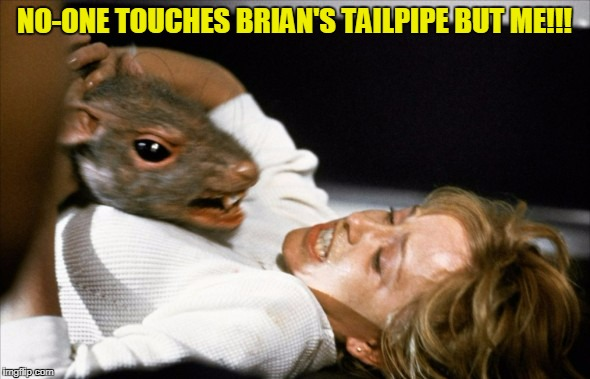 NO-ONE TOUCHES BRIAN'S TAILPIPE BUT ME!!! | made w/ Imgflip meme maker