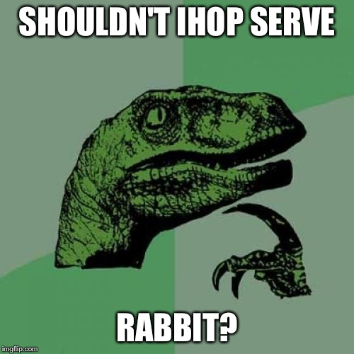 Because, you know, they hop. | SHOULDN'T IHOP SERVE RABBIT? | image tagged in memes,philosoraptor,funny,rabbits,bad puns | made w/ Imgflip meme maker