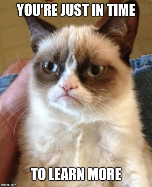 Grumpy Cat Meme | YOU'RE JUST IN TIME TO LEARN MORE | image tagged in memes,grumpy cat | made w/ Imgflip meme maker
