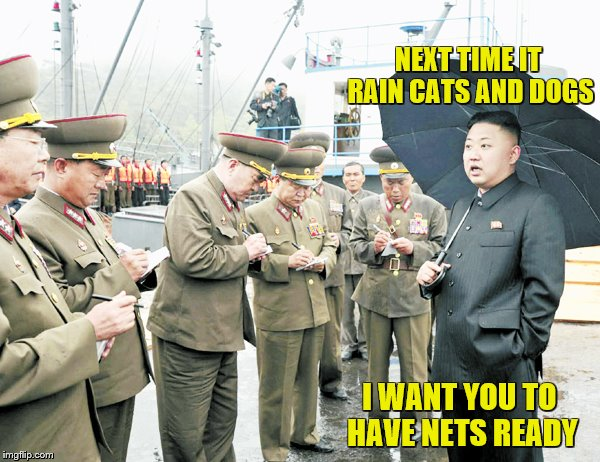 NEXT TIME IT RAIN CATS AND DOGS I WANT YOU TO HAVE NETS READY | made w/ Imgflip meme maker