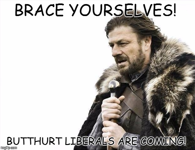 Brace Yourselves X is Coming Meme | BRACE YOURSELVES! BUTTHURT LIBERALS ARE COMING! | image tagged in memes,brace yourselves x is coming | made w/ Imgflip meme maker