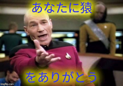 Picard Wtf Meme | あなたに猿 をありがとう | image tagged in memes,picard wtf | made w/ Imgflip meme maker