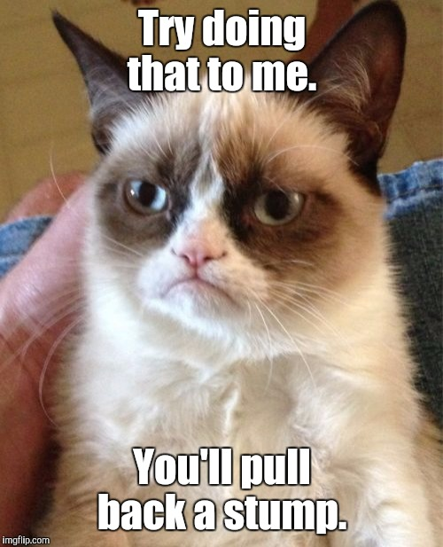 Grumpy Cat Meme | Try doing that to me. You'll pull back a stump. | image tagged in memes,grumpy cat | made w/ Imgflip meme maker