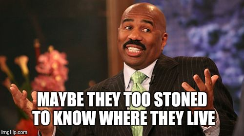Steve Harvey Meme | MAYBE THEY TOO STONED TO KNOW WHERE THEY LIVE | image tagged in memes,steve harvey | made w/ Imgflip meme maker