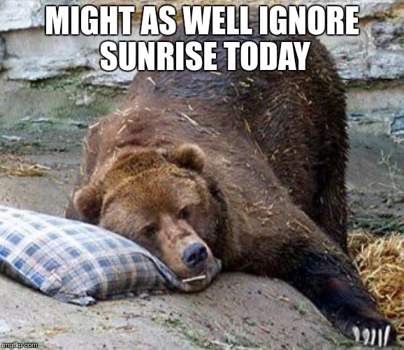 Sleep | MIGHT AS WELL IGNORE SUNRISE TODAY | image tagged in sleep | made w/ Imgflip meme maker