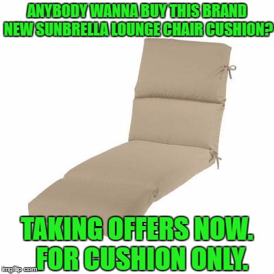 First to start selling on Image Flip.  Yeah me the trend setter. | ANYBODY WANNA BUY THIS BRAND NEW SUNBRELLA LOUNGE CHAIR CUSHION? TAKING OFFERS NOW.  FOR CUSHION ONLY. | image tagged in trend,setter,craigslist,ebay,got,memes | made w/ Imgflip meme maker