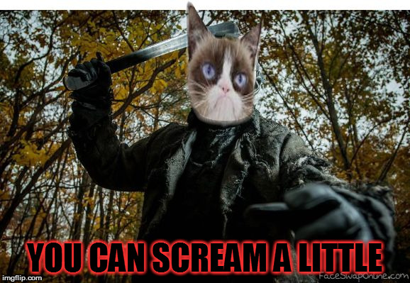 grumpy cat jason | YOU CAN SCREAM A LITTLE | image tagged in grumpy cat jason | made w/ Imgflip meme maker