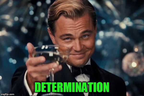 Leonardo Dicaprio Cheers Meme | DETERMINATION | image tagged in memes,leonardo dicaprio cheers | made w/ Imgflip meme maker