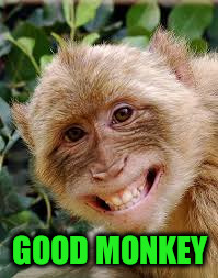 GOOD MONKEY | made w/ Imgflip meme maker