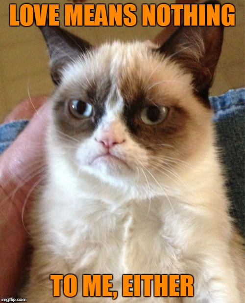 Grumpy Cat Meme | LOVE MEANS NOTHING TO ME, EITHER | image tagged in memes,grumpy cat | made w/ Imgflip meme maker