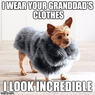 I WEAR YOUR GRANDDAD'S CLOTHES I LOOK INCREDIBLE | image tagged in i'm in this big ass coat | made w/ Imgflip meme maker