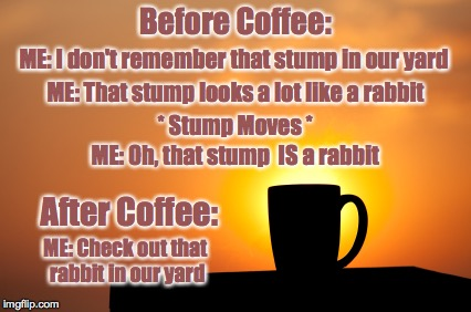 Good Morning | Before Coffee: After Coffee: ME: I don't remember that stump in our yard ME: That stump looks a lot like a rabbit * Stump Moves * ME: Oh, th | image tagged in coffee,before and after | made w/ Imgflip meme maker