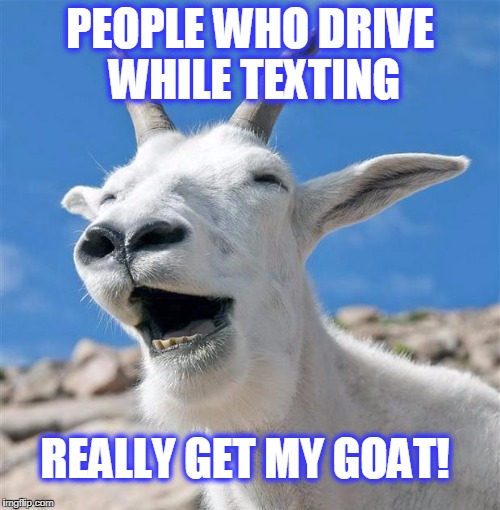 Laughing Goat | PEOPLE WHO DRIVE WHILE TEXTING REALLY GET MY GOAT! | image tagged in memes,laughing goat | made w/ Imgflip meme maker
