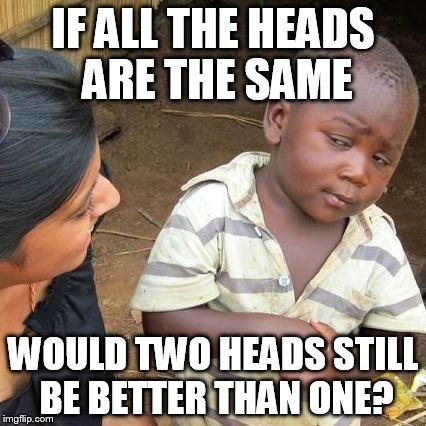 Third World Skeptical Kid Meme | IF ALL THE HEADS ARE THE SAME WOULD TWO HEADS STILL BE BETTER THAN ONE? | image tagged in memes,third world skeptical kid | made w/ Imgflip meme maker