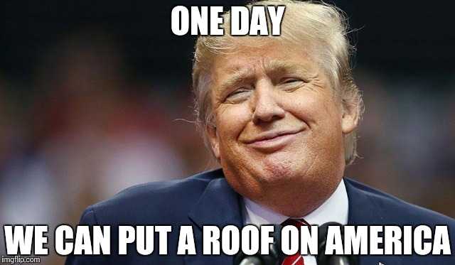 Trump Oopsie | ONE DAY WE CAN PUT A ROOF ON AMERICA | image tagged in trump oopsie | made w/ Imgflip meme maker