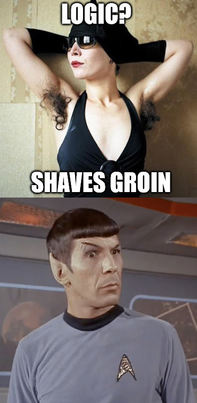 I often wonder what the logic is | LOGIC? SHAVES GROIN | image tagged in shaving,armpits,spock,illogical,memes | made w/ Imgflip meme maker