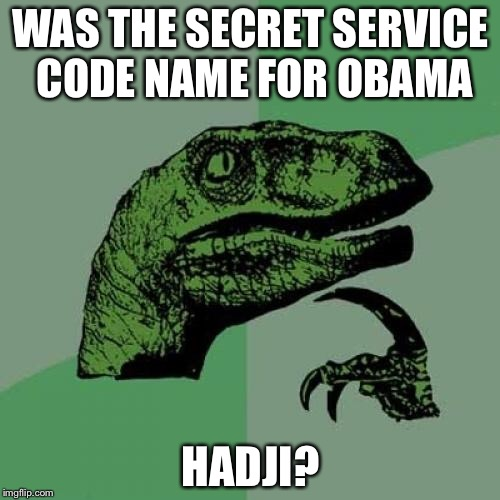Philosoraptor Meme | WAS THE SECRET SERVICE CODE NAME FOR OBAMA HADJI? | image tagged in memes,philosoraptor | made w/ Imgflip meme maker