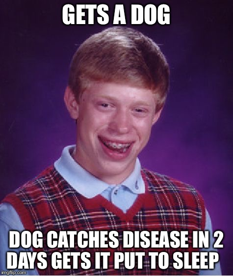 Bad Luck Brian Meme | GETS A DOG DOG CATCHES DISEASE IN 2 DAYS GETS IT PUT TO SLEEP | image tagged in memes,bad luck brian | made w/ Imgflip meme maker