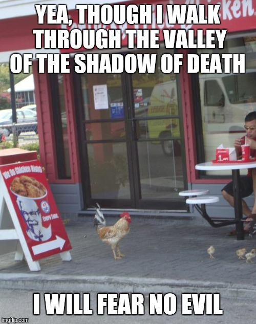 YEA, THOUGH I WALK THROUGH THE VALLEY OF THE SHADOW OF DEATH I WILL FEAR NO EVIL | image tagged in kfc chicken | made w/ Imgflip meme maker