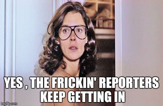 Jobeth Williams | YES , THE FRICKIN' REPORTERS KEEP GETTING IN | image tagged in jobeth williams | made w/ Imgflip meme maker