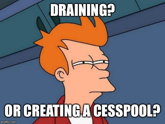 Futurama Fry Meme | DRAINING? OR CREATING A CESSPOOL? | image tagged in memes,futurama fry | made w/ Imgflip meme maker