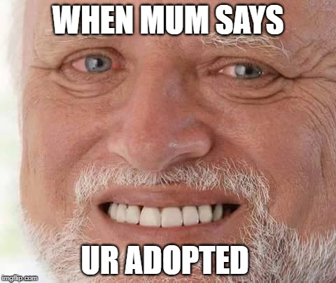 WHEN MUM SAYS UR ADOPTED | image tagged in harold smiling | made w/ Imgflip meme maker