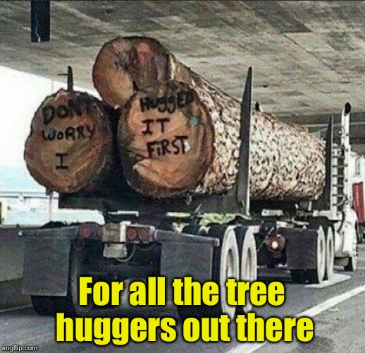 How many tree huggers live in a house without wood? | For all the tree huggers out there | image tagged in memes,tree hugger,liberals,environmental | made w/ Imgflip meme maker