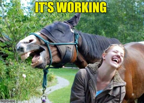 Laughing Horse | IT'S WORKING | image tagged in laughing horse | made w/ Imgflip meme maker