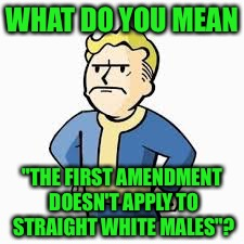 "WHAT DO YOU MEAN ""THE FIRST AMENDMENT DOESN'T APPLY TO STRAIGHT WHITE MALES""? 