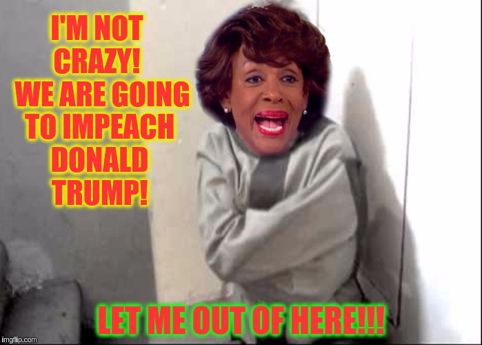 Straight Jacket Max | I'M NOT CRAZY!   WE ARE GOING TO IMPEACH DONALD TRUMP! LET ME OUT OF HERE!!! | image tagged in straight jacket max,memes | made w/ Imgflip meme maker