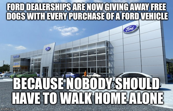 FORD DEALERSHIPS ARE NOW GIVING AWAY FREE DOGS WITH EVERY PURCHASE OF A FORD VEHICLE BECAUSE NOBODY SHOULD HAVE TO WALK HOME ALONE | image tagged in funny memes,cars,trucks | made w/ Imgflip meme maker